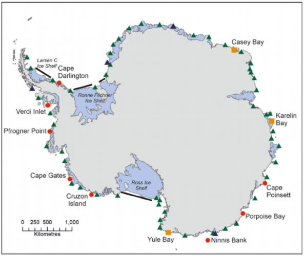 Спутник помог найти неизвестные ранее колонии пингвинов