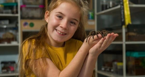 8-летняя девочка делит спальню с более чем 50 тарантулами