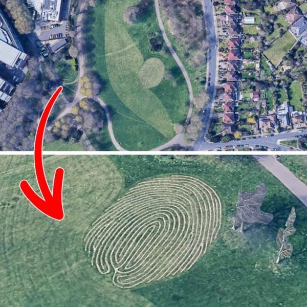 10 интригующих находок, которые стали возможны благодаря картам Google