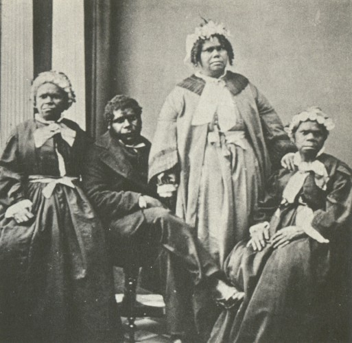 День в истории: 24 ноября - Тасманские острова и книга Дарвина