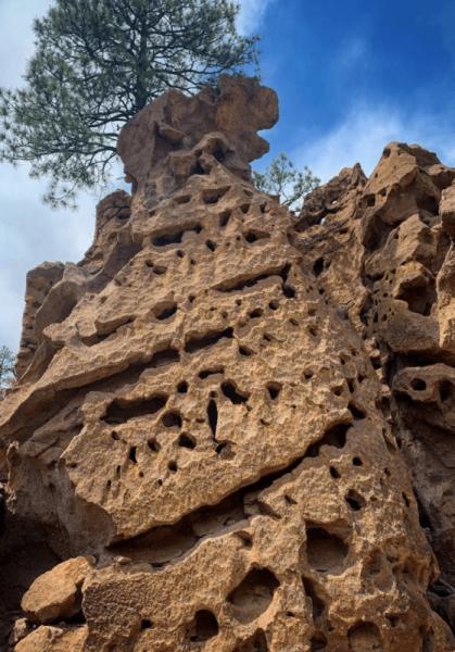 Колония Гоблинов в Пондероса (Нью-Мексико)